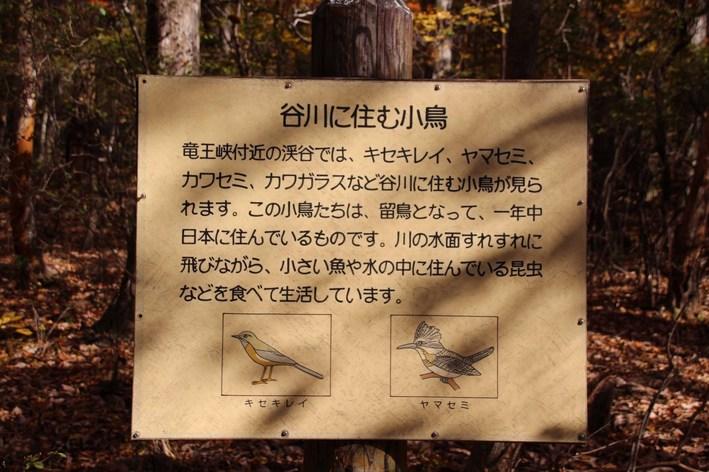 20-01-IMG_9753mh.jpg