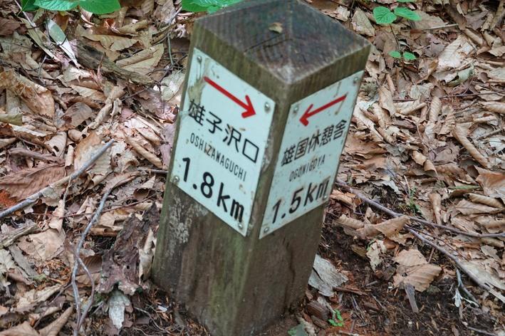 7-08x-DSC04963mh.jpg
